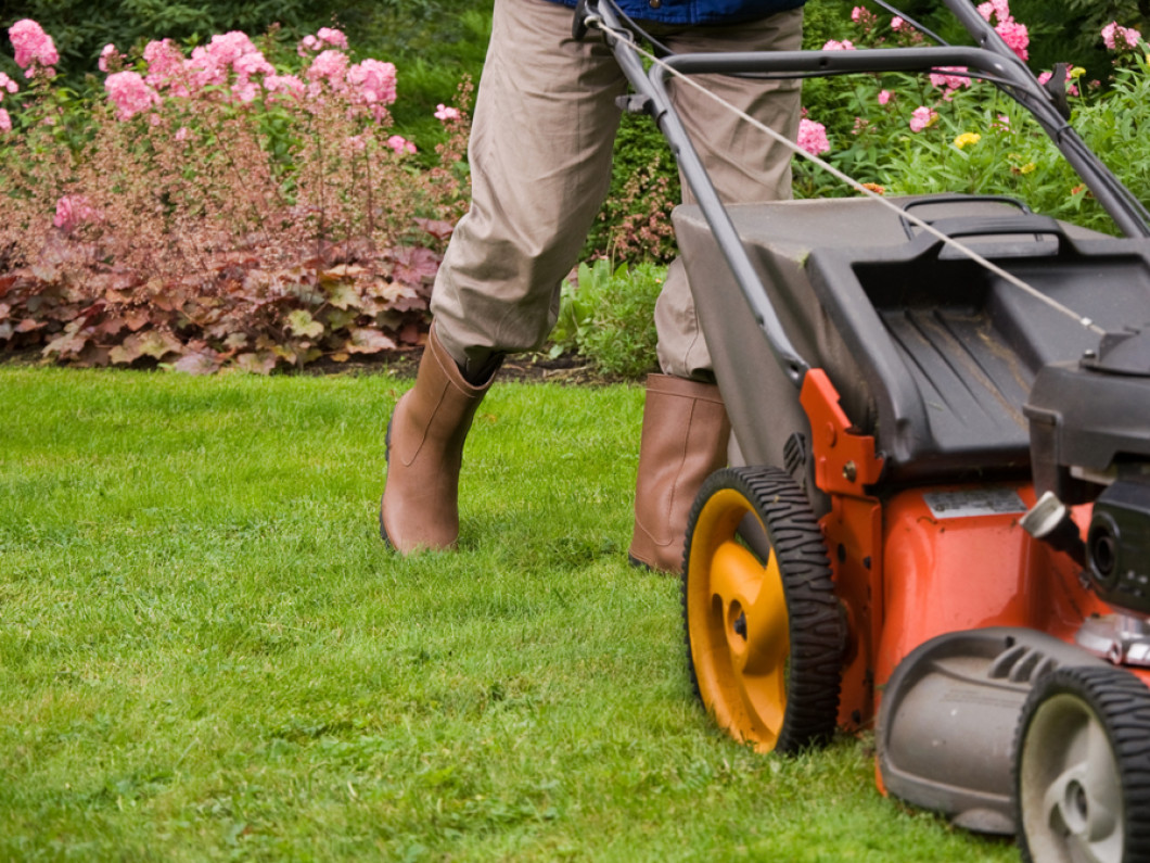 Talk to us about a free estimate for landscaping services